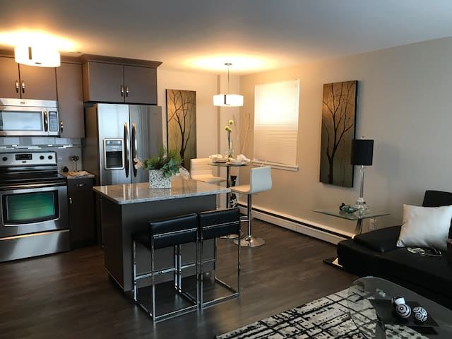 Chey's Place- Modern Downtown One-Bedroom Condo