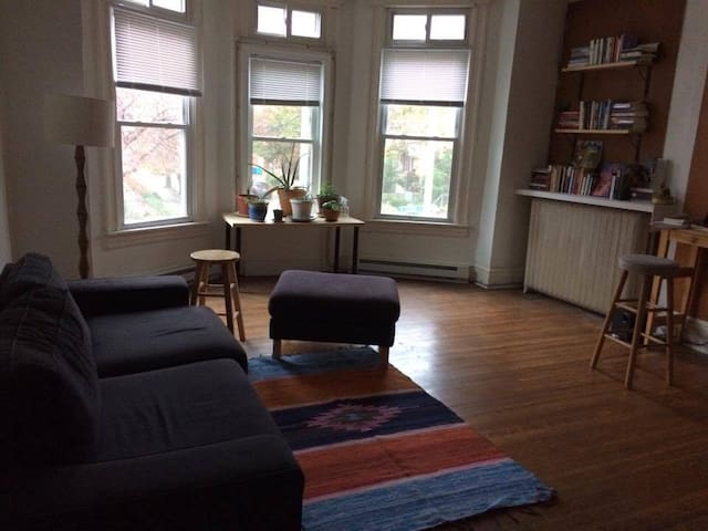Bright, Spacious 1-Bedroom Apartment Near JHU - Baltimore - Flat