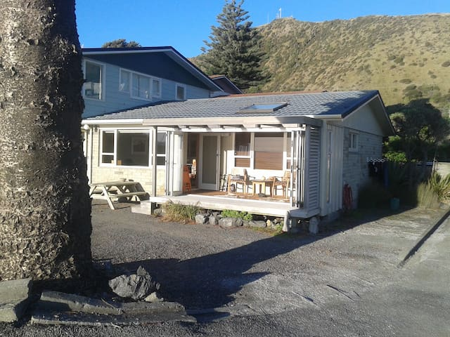 Te One (The Beach) - Paekakariki, Kapiti Coast - Paekakariki - Flat
