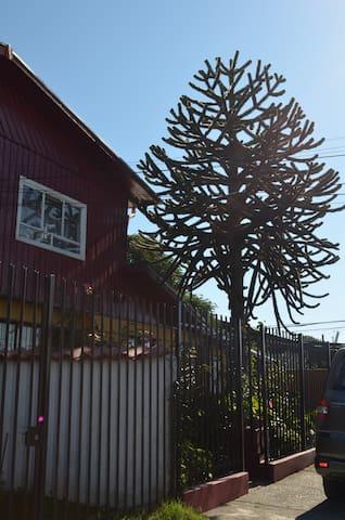 La casa de la Oma - Hualpen - Domek gościnny