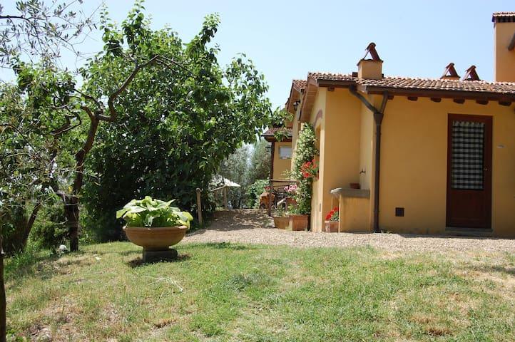 Agriturismo Eustachio - Salvia, sleeps 4 guests - Pontassieve