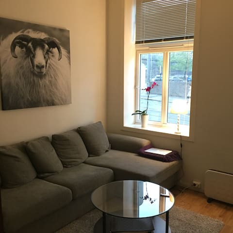 Charming apartment, best location. - Oslo - Apartment