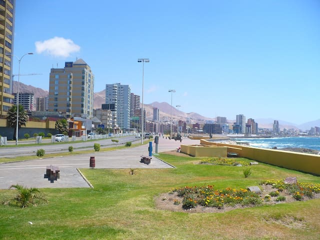 Nice, good atmosphere, central at a good price! - Antofagasta