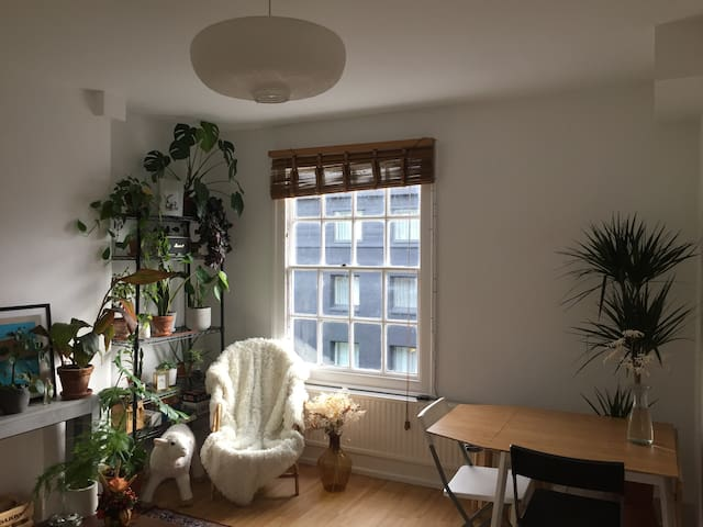 Bright and cosy room in Shoreditch