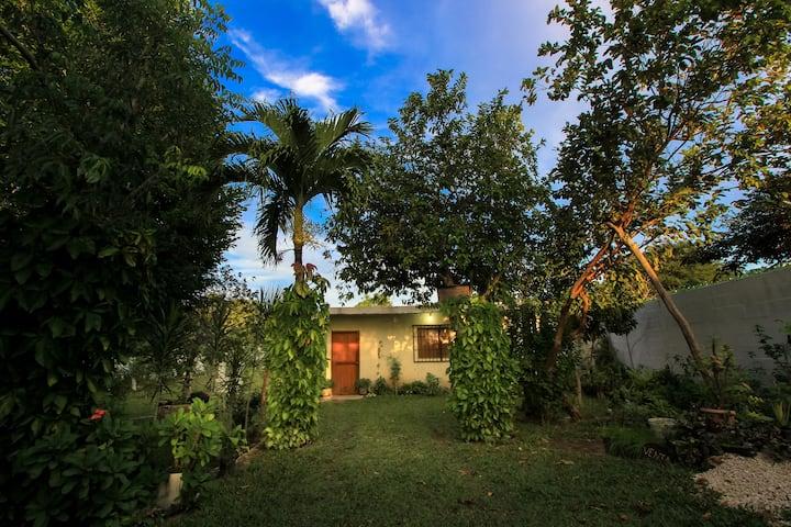 Casa Itzayana Jardín Botánico Medicina Maya