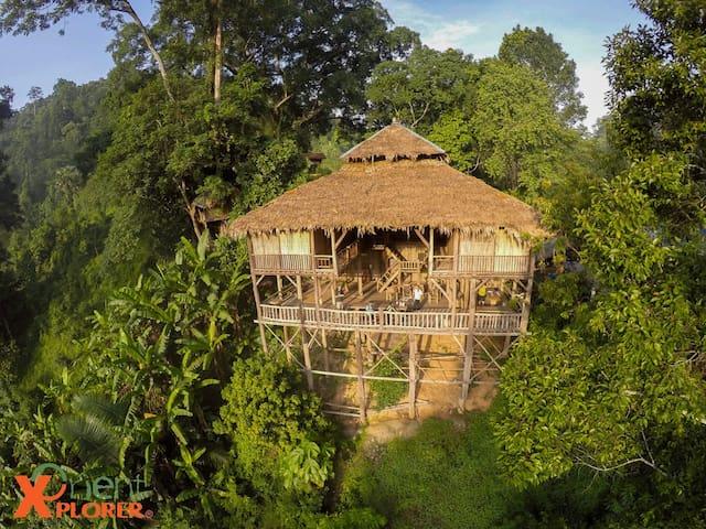 Tree House Hideaway - Tambon Sriphum, A. Muang Chiang Mai