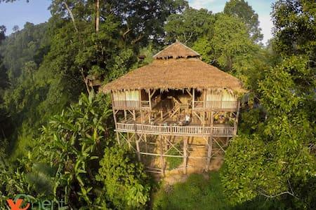 Tree House Hideaway - Tambon Sriphum, A. Muang Chiang Mai  - Ağaç Ev
