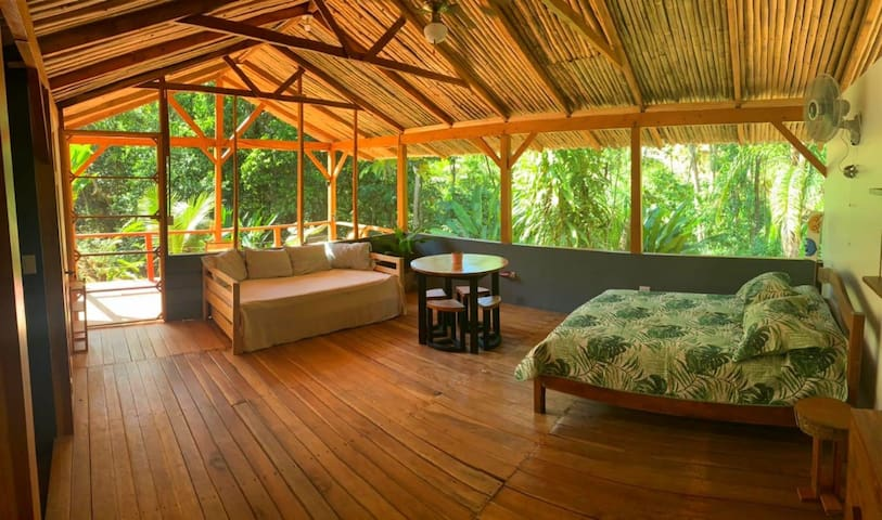 Private Jungle Loft with river access. Beach 5min
