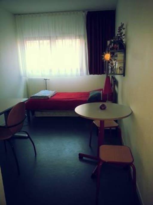Un studio très bien agencé avec un lit, une table, deux chaises et deux matelas d'appoint.