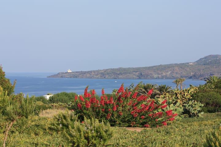 vista faro Punta Spadillo
