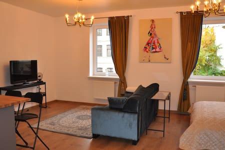 Old town studio apartment.