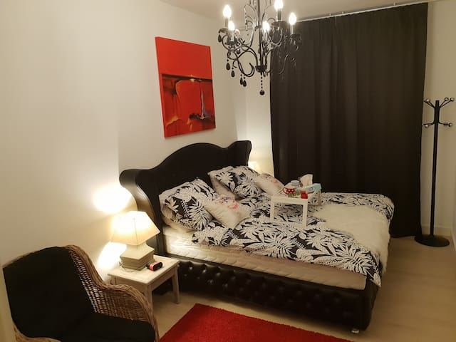 Modren lovley apartment in witte de withstraat...1