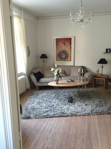 Hyggelig lejlighed midt i Roskilde - Roskilde - Pis