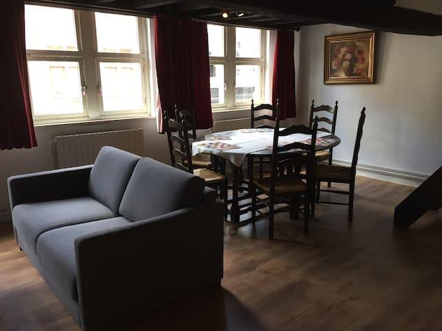 Centre Bruges complete appartement