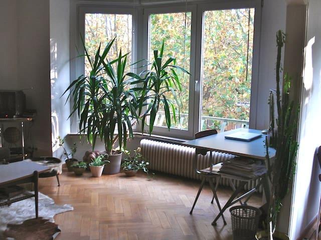 Beautiful 50s flat in NW Brussels - Koekelberg - Wohnung