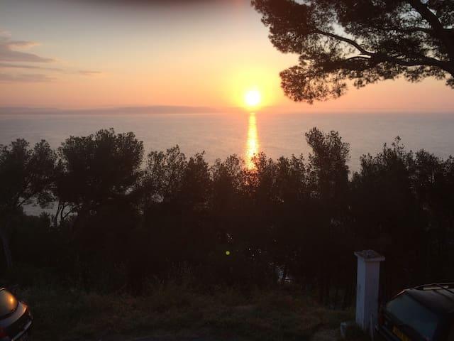 Étang & Camargue - superbe vue au calme - nature