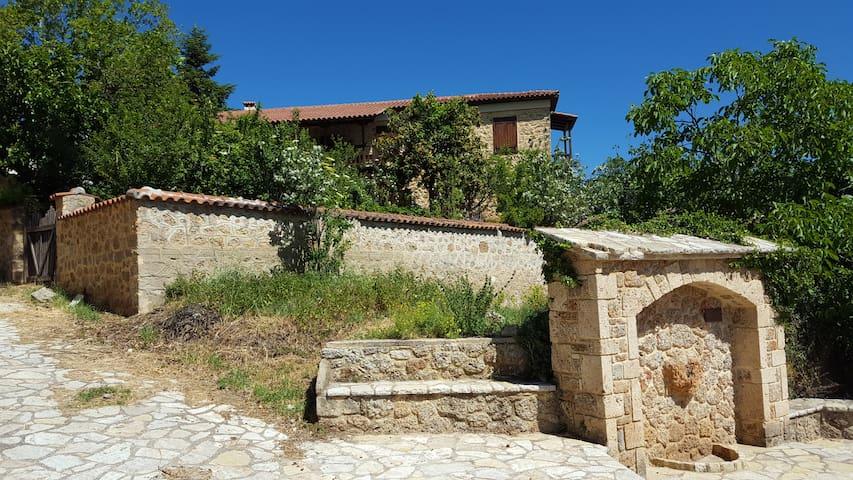 Fabulous stay in rustic Villa Platanus (est. 1840) - Ampelokipi - บ้าน