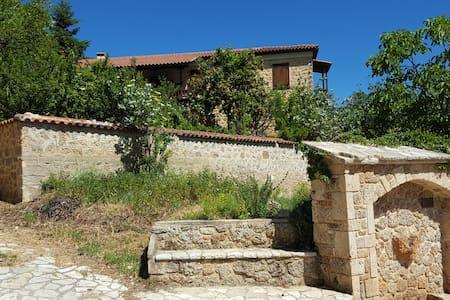 Fabulous stay in rustic Villa Platanus (est. 1840) - Ampelokipi - Hus