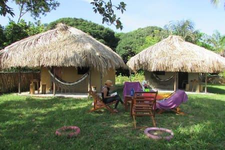 Venha descubri a ilha de Marajó! - Jubim - Lainnya
