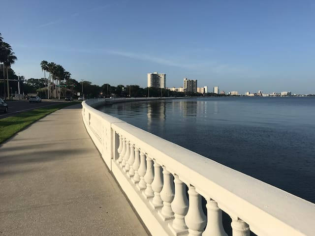 Bayshore South Tampa Townhouse - Water View
