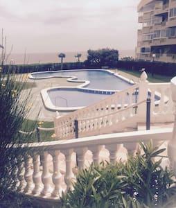Estudio Mil Plameras - Orihuela - Apartment