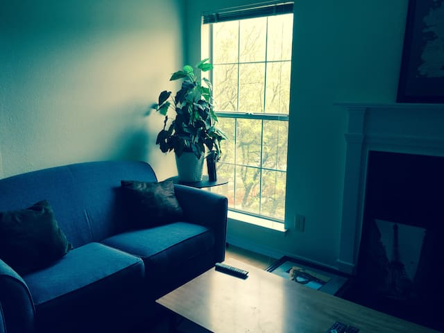 Upscale Area, Private Room, Walk to Metro, Near DC - McLean - Apartment