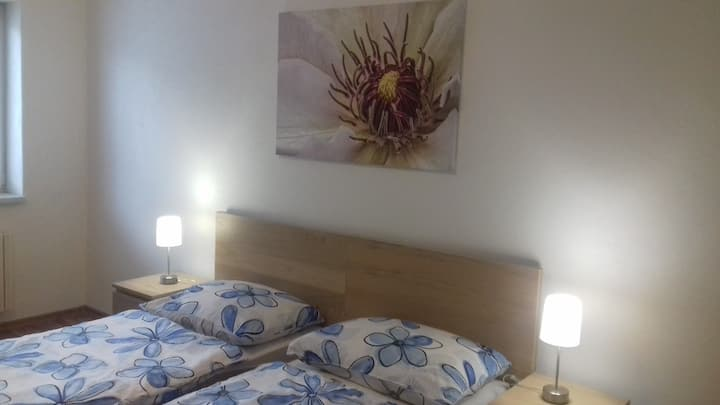Luxury flat 10 min. from Ostravar arena (wi-fi)