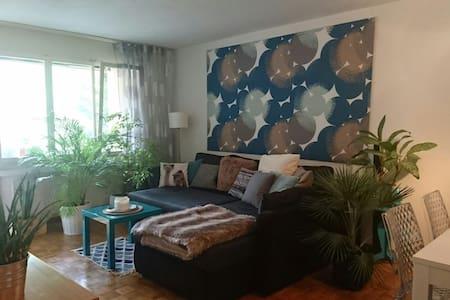 2 rooms pop appartment Altstetten - Zuric - Pis