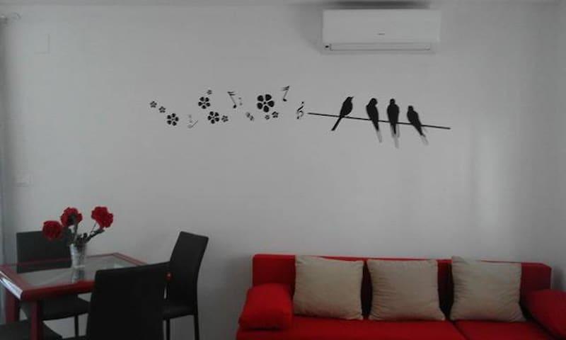 Apartment Kokot