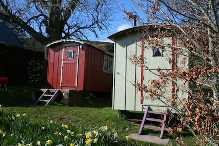 Balranald shepherds hut, Hot tub & Sauna, Bbq hut