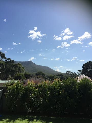 View from the backyard