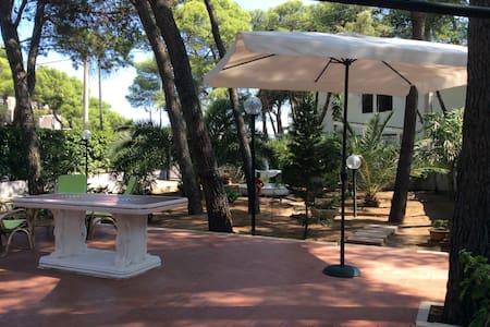 Villa in pineta - House