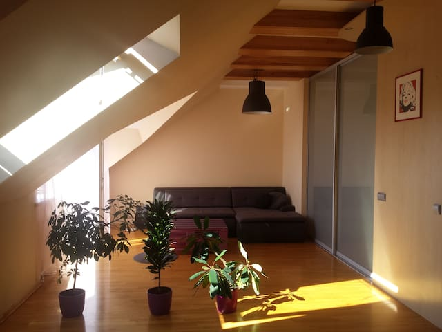 Calm & cozy studio apartment close to Verkiai park - Vilnius - Apartamento