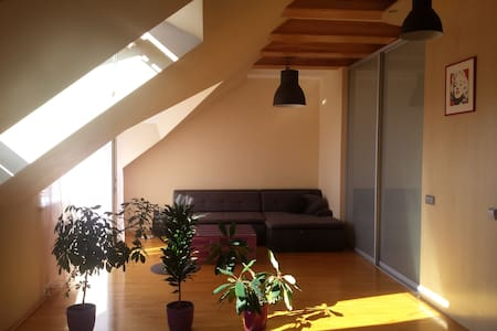 Calm & cozy studio apartment close to Verkiai park - Vilnius