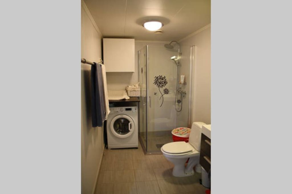 First bathroom with shower and washing machine