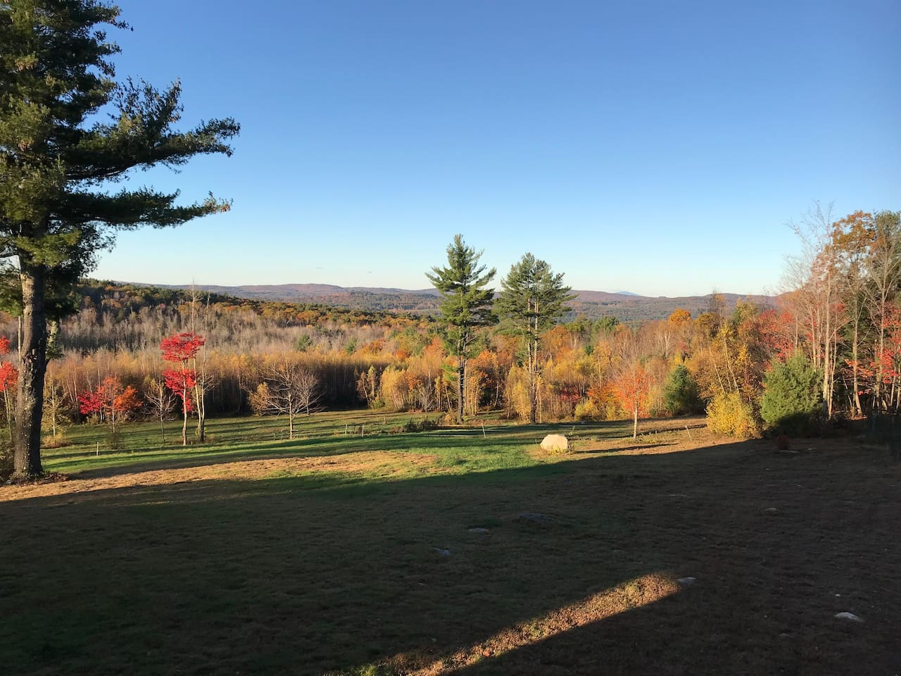 Fall view off your deck