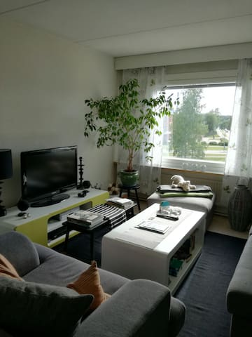 Light, fresh and cosy apartment