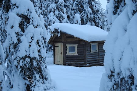 """northern lights cabins ...""""crazy loon"""""""