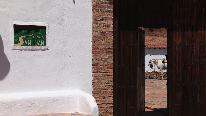 San Juan Retreat-Wooden House - Puerto Serrano - Bed & Breakfast