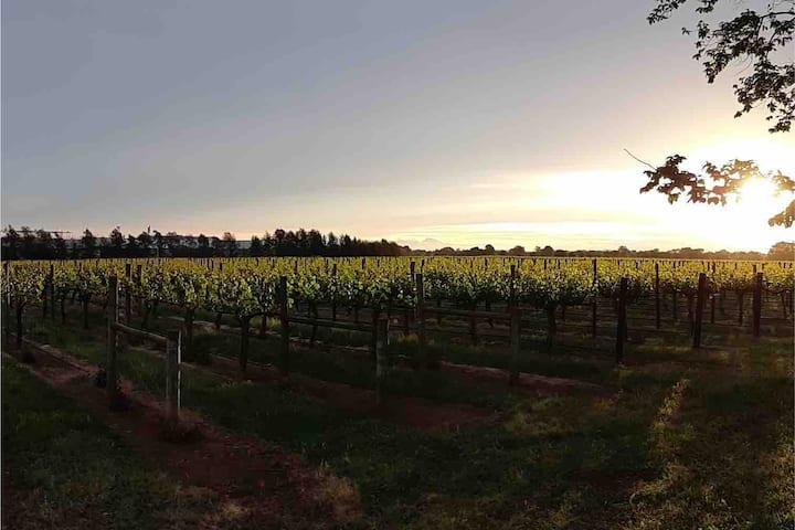 Milawa Vineyard Views Accommodation - Unit 2 of 2