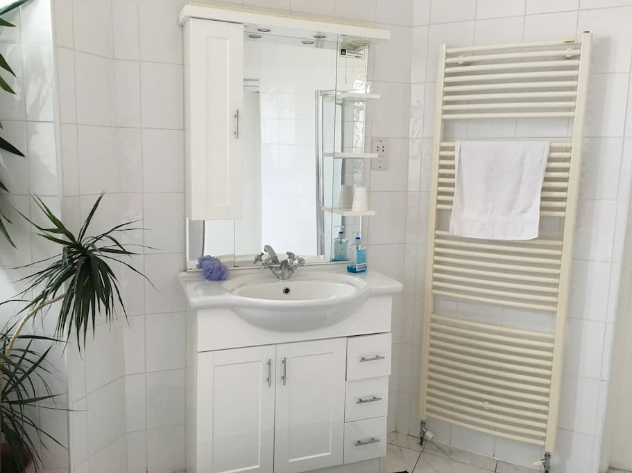 Our Shared Bathroom with Walk-in Shower.
