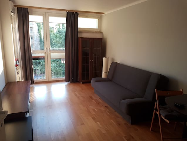 Central Warsaw Apartment with AirCon