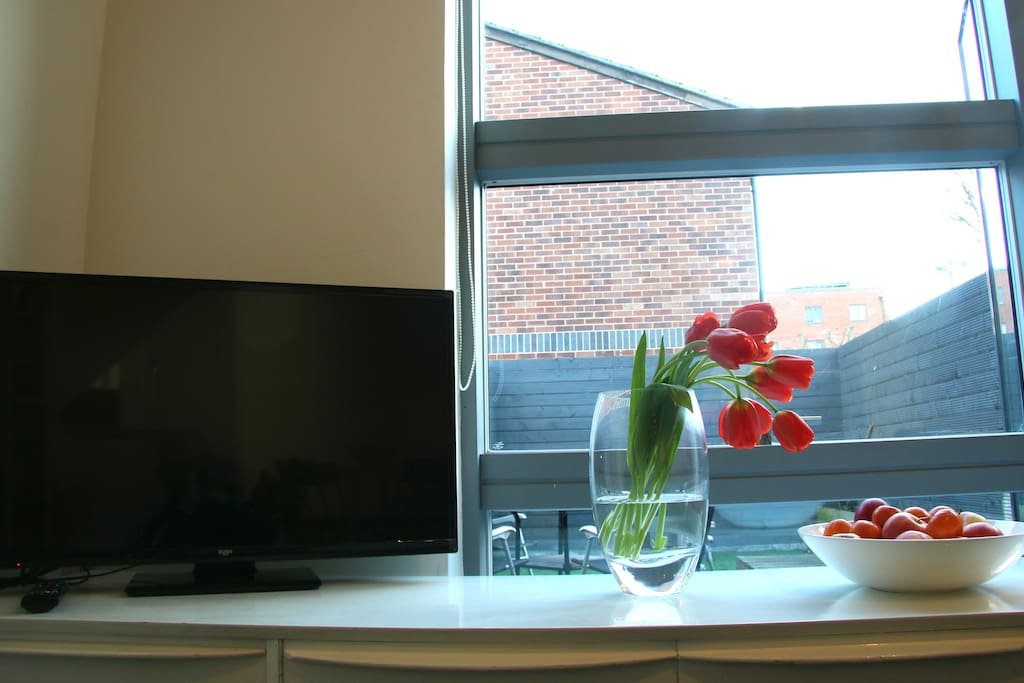 Freeview TV for both radio and television as well as excellent wifi services