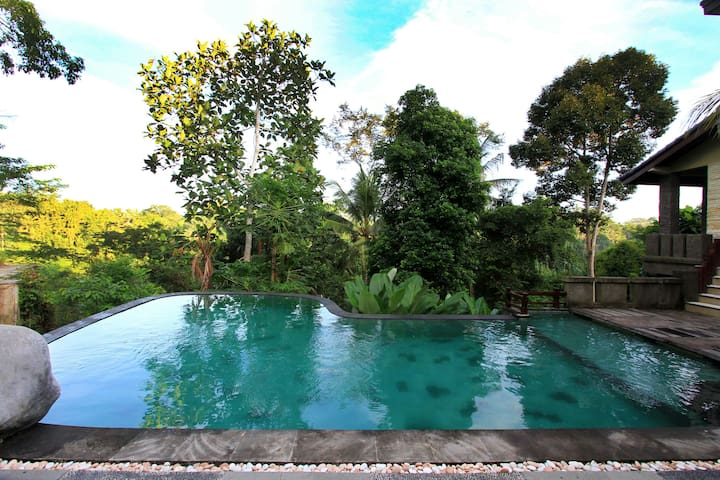 #2  1 BR with Jungle View & shared pool@ The iyang