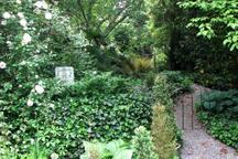 Charles Street Garden Suite (Apt) -  Walk to Town