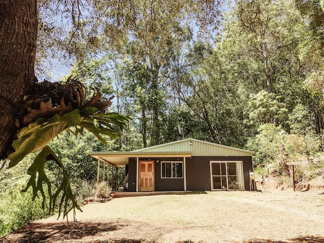 The Avocado Shed, Currumbin Valley