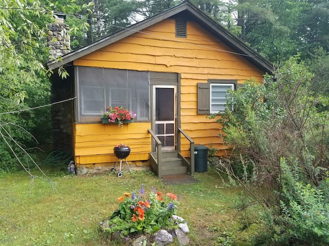 Private Adirondacks 1 bedroom Cabin - Johnsburg