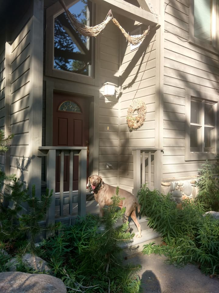 Warm, Modern Kirkwood East Meadows House