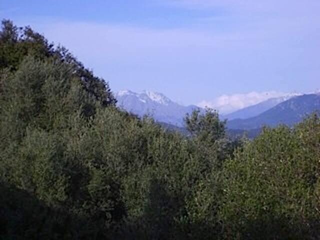 Une vue de la villa
