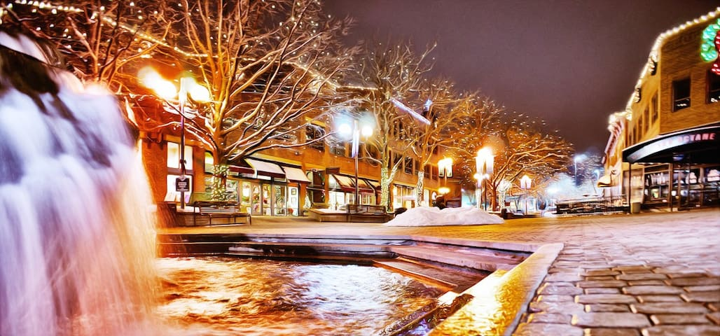 I absolutely LOVE Old Town Fort Collins. You will too! Book me now!!
